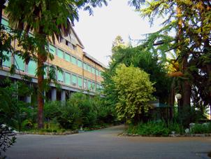 Casa S. Maria giardino